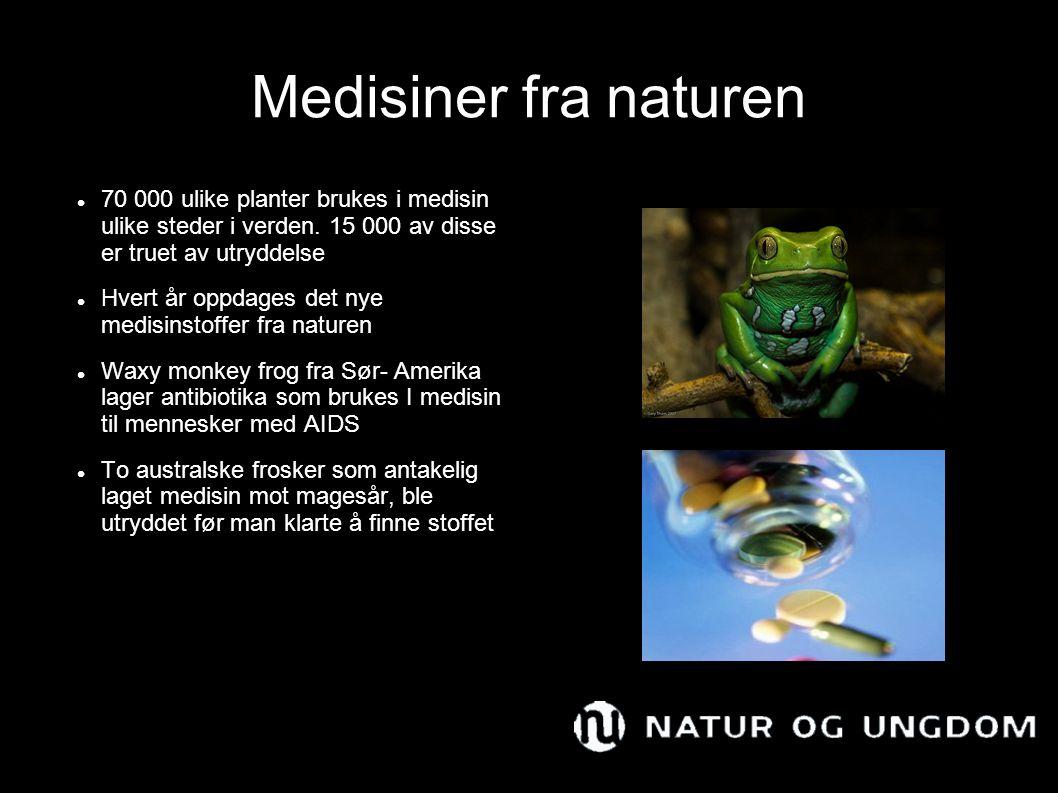 Medisiner fra naturen 70 000 ulike planter brukes i medisin ulike steder i verden. 15 000 av disse er truet av utryddelse Hvert år oppdages det nye me