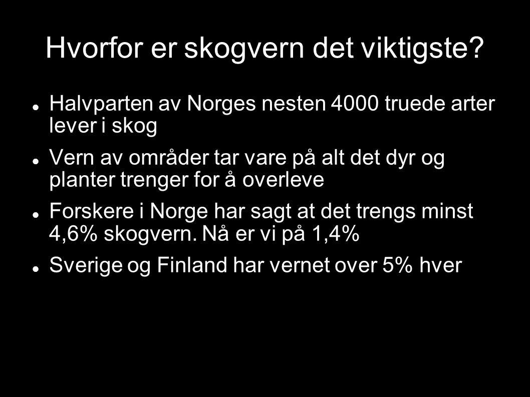 Hvorfor er skogvern det viktigste? Halvparten av Norges nesten 4000 truede arter lever i skog Vern av områder tar vare på alt det dyr og planter treng