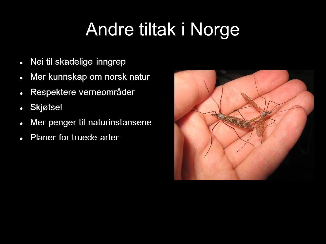 Andre tiltak i Norge Nei til skadelige inngrep Mer kunnskap om norsk natur Respektere verneområder Skjøtsel Mer penger til naturinstansene Planer for