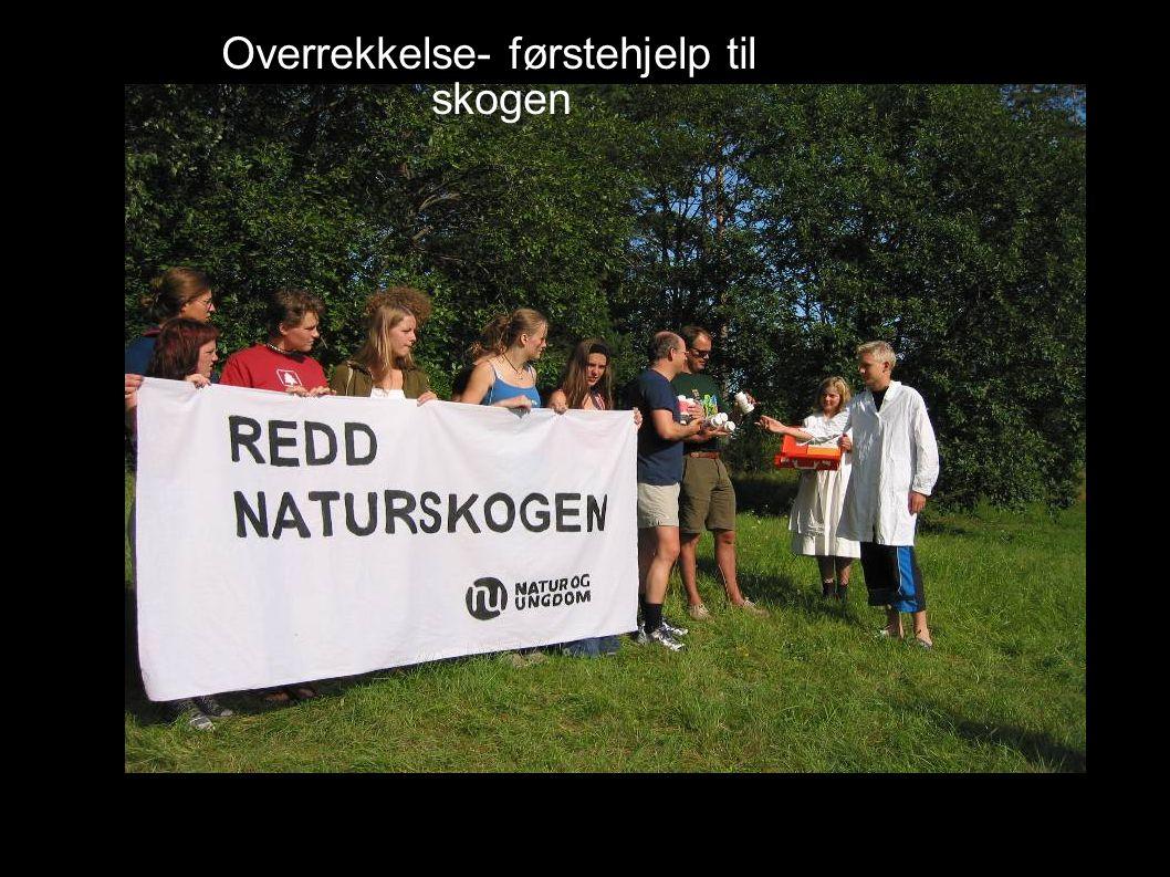 Overrekkelse- førstehjelp til skogen