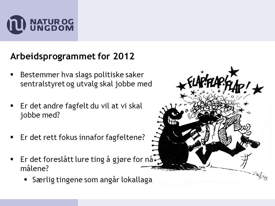 Arbeidsprogrammet for 2012  Bestemmer hva slags politiske saker sentralstyret og utvalg skal jobbe med  Er det andre fagfelt du vil at vi skal jobbe med.