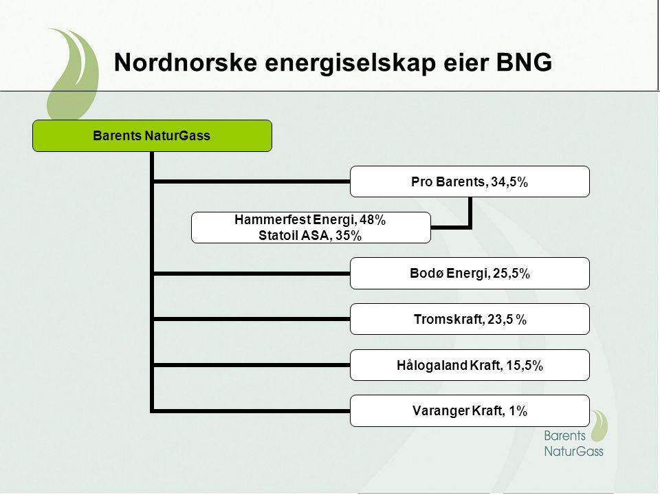 Barents NaturGass Pro Barents, 34,5% Hammerfest Energi, 48% Statoil ASA, 35% Bodø Energi, 25,5% Tromskraft, 23,5 % Hålogaland Kraft, 15,5% Varanger Kraft, 1% Nordnorske energiselskap eier BNG