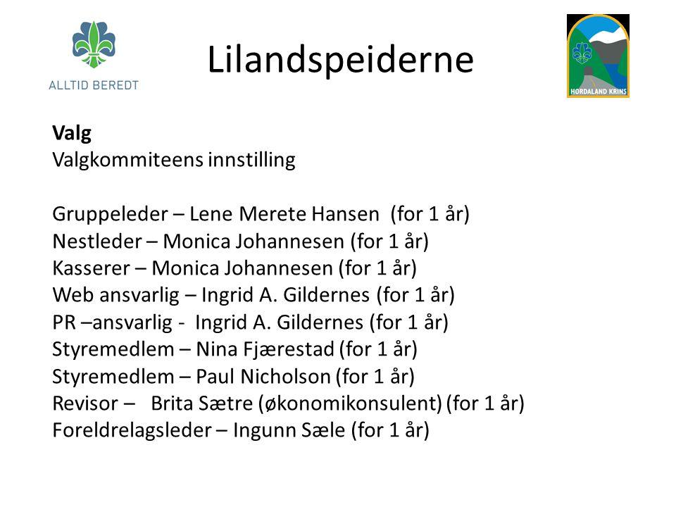 Lilandspeiderne Valg Valgkommiteens innstilling Gruppeleder – Lene Merete Hansen (for 1 år) Nestleder – Monica Johannesen (for 1 år) Kasserer – Monica