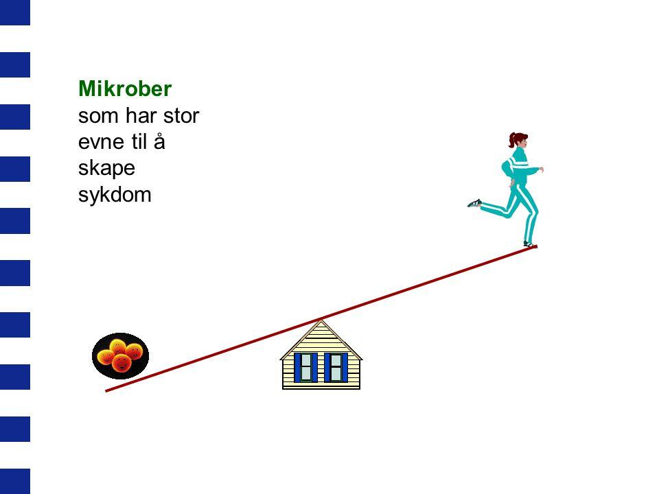 Mikrober som har stor evne til å skape sykdom
