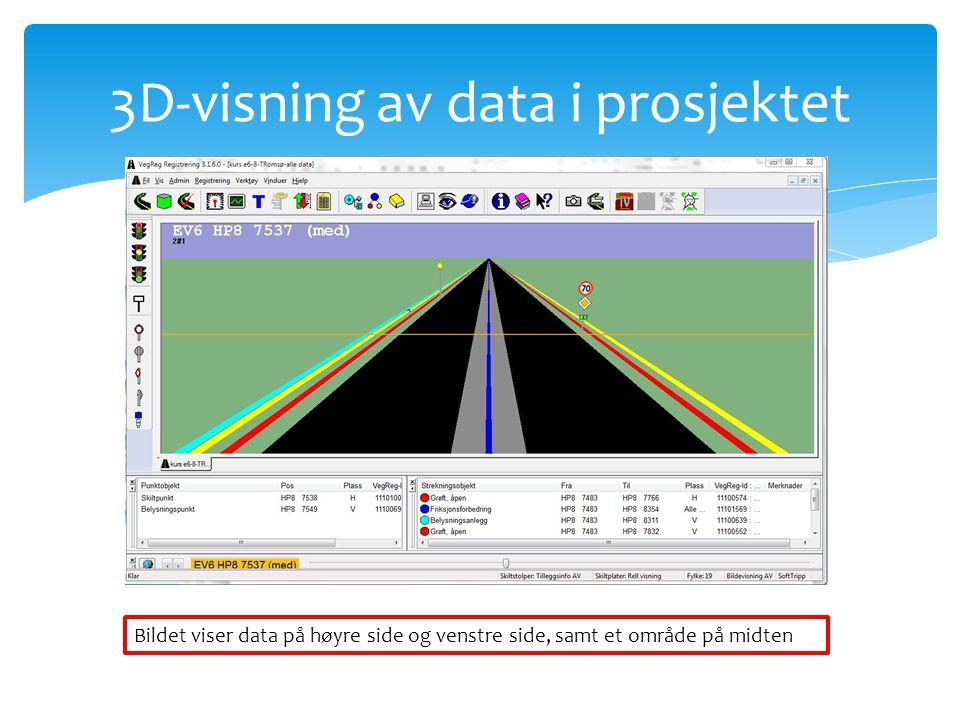 3D-visning av data i prosjektet Bildet viser data på høyre side og venstre side, samt et område på midten