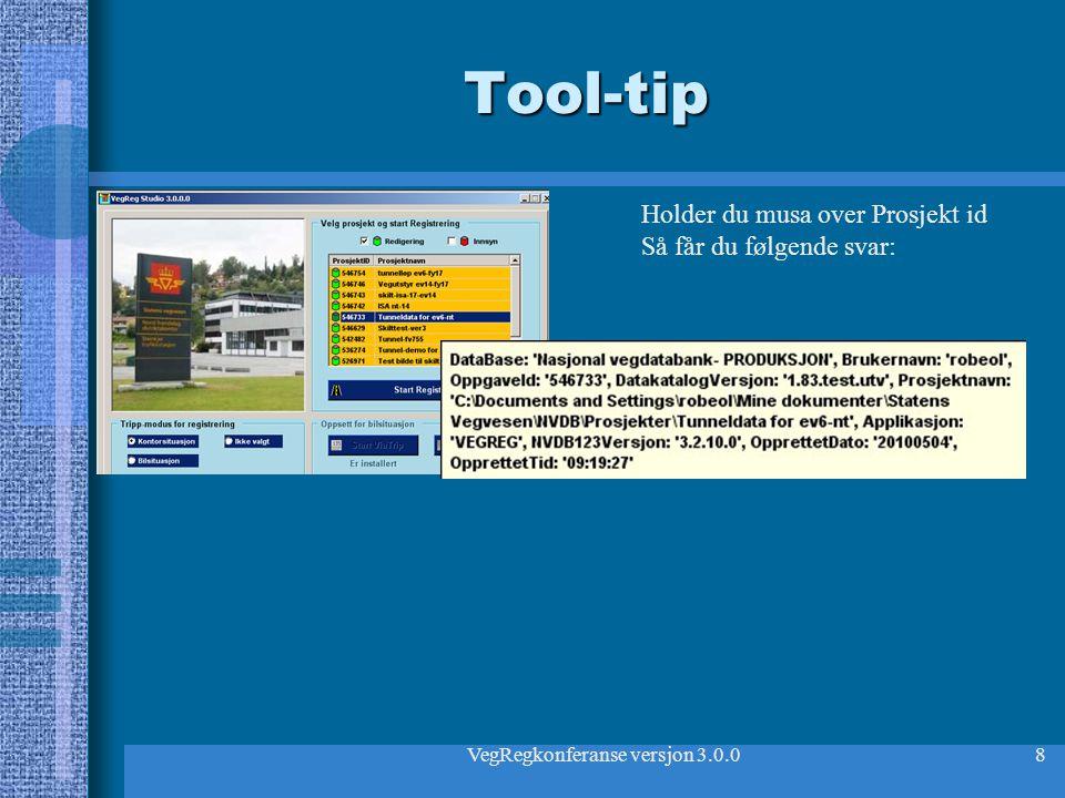 VegRegkonferanse versjon 3.0.08 Tool-tip Holder du musa over Prosjekt id Så får du følgende svar: