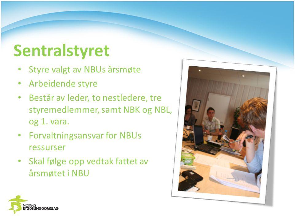 Sentralstyret Styre valgt av NBUs årsmøte Arbeidende styre Består av leder, to nestledere, tre styremedlemmer, samt NBK og NBL, og 1.