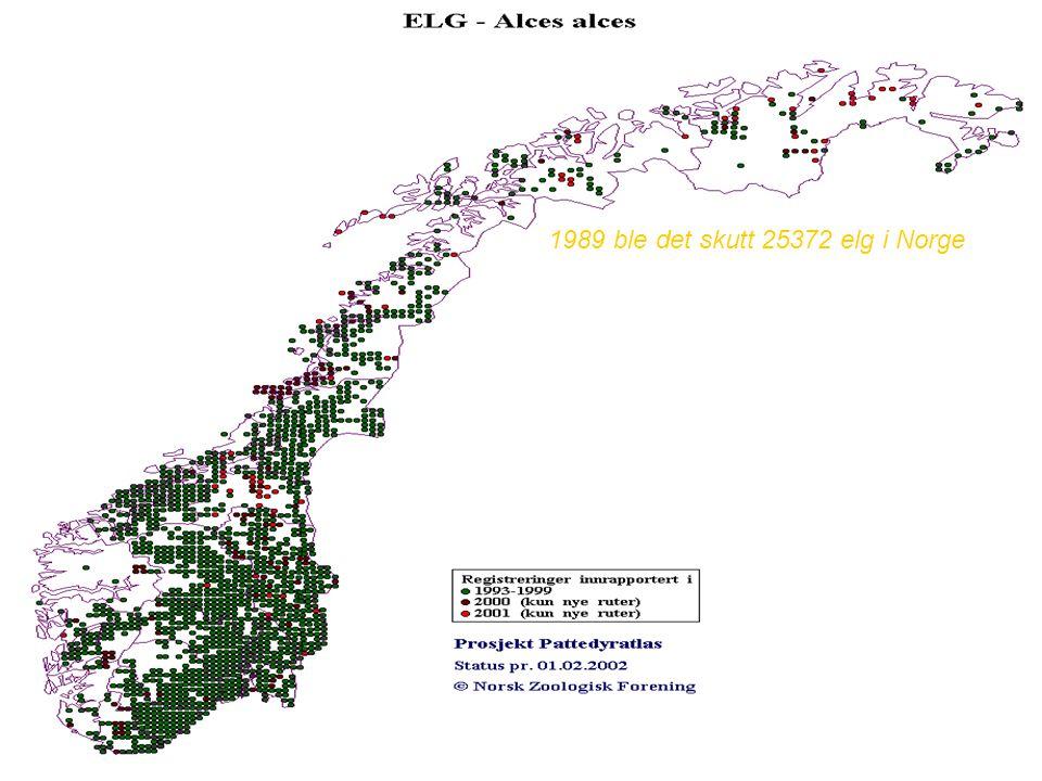 1989 ble det skutt 25372 elg i Norge