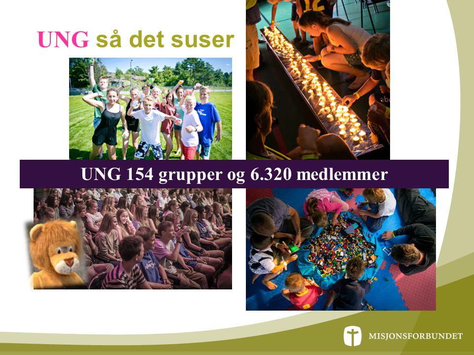 UNG så det suser UNG 154 grupper og 6.320 medlemmer