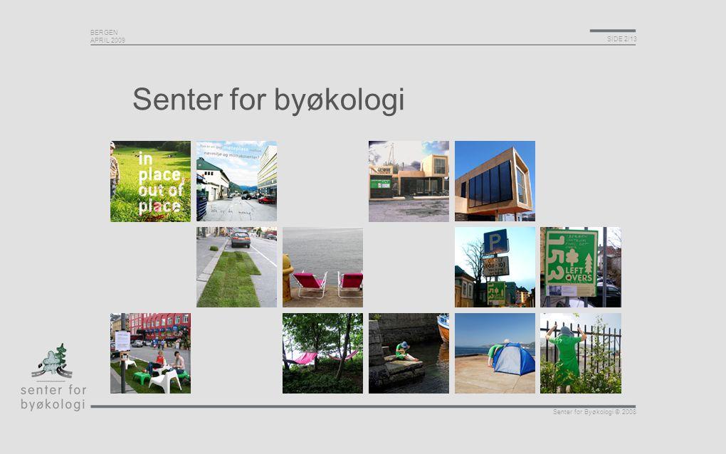 BERGEN APRIL 2009 SIDE 3/13 Senter for Byøkologi © 2008 Struktur Vår rolle i samfunnsutviklingen Hvordan skape prosjekter som kan påvirke samfunnsutviklingen.