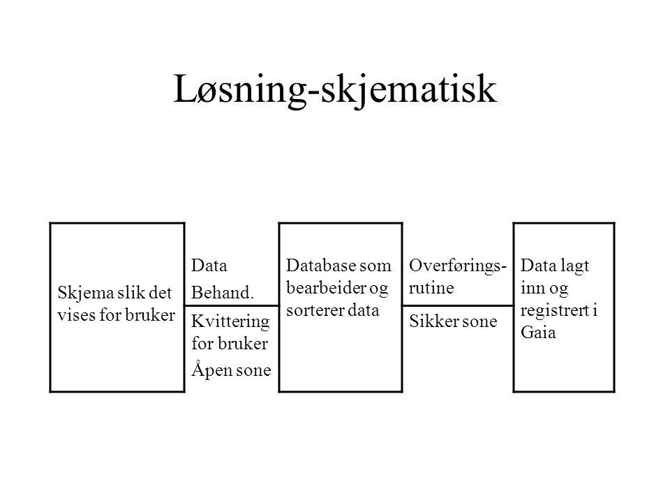 Løsning-skjematisk Skjema slik det vises for bruker Data Behand.