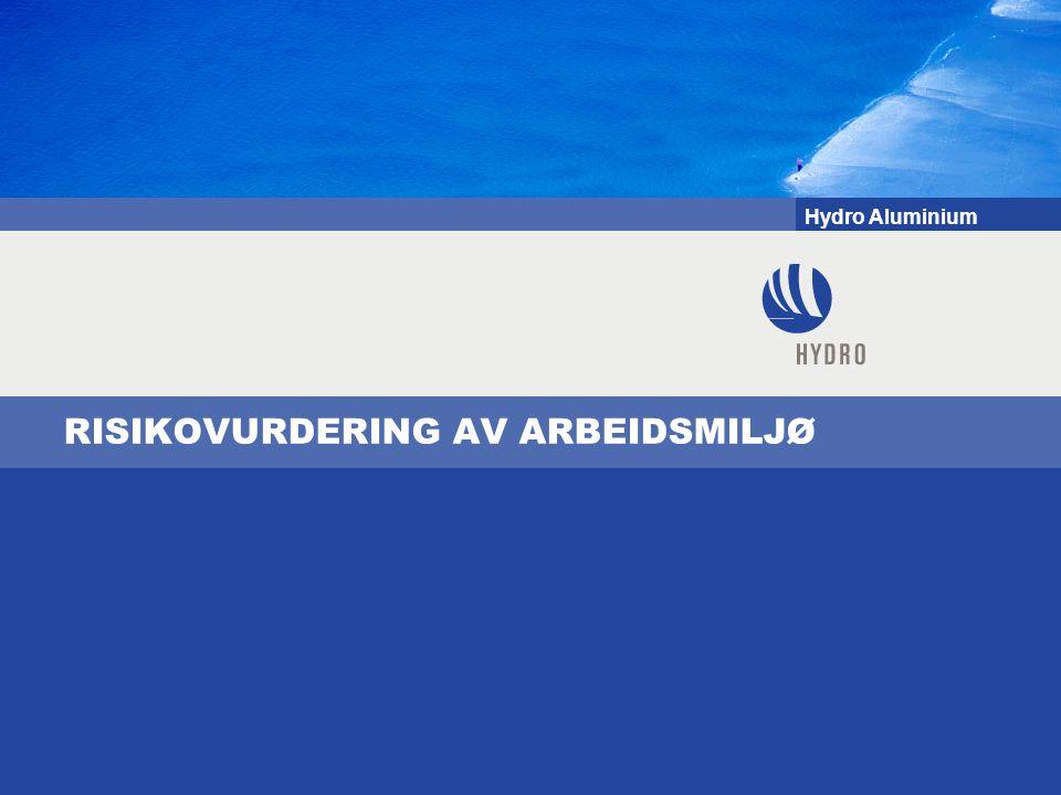 Hydro Aluminium RISIKOVURDERING AV ARBEIDSMILJØ