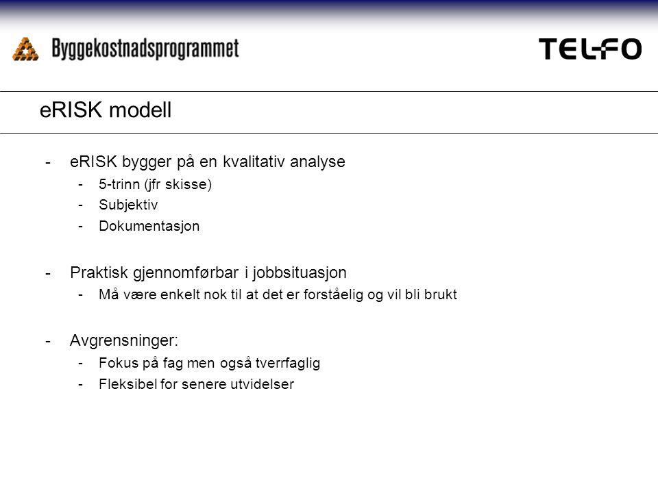 eRISK modell -eRISK bygger på en kvalitativ analyse -5-trinn (jfr skisse) -Subjektiv -Dokumentasjon -Praktisk gjennomførbar i jobbsituasjon -Må være enkelt nok til at det er forståelig og vil bli brukt -Avgrensninger: -Fokus på fag men også tverrfaglig -Fleksibel for senere utvidelser