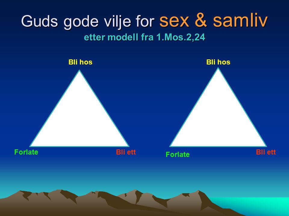 Guds gode vilje for sex & samliv etter modell fra 1.Mos.2,24 Forlate Bli hos Bli ett