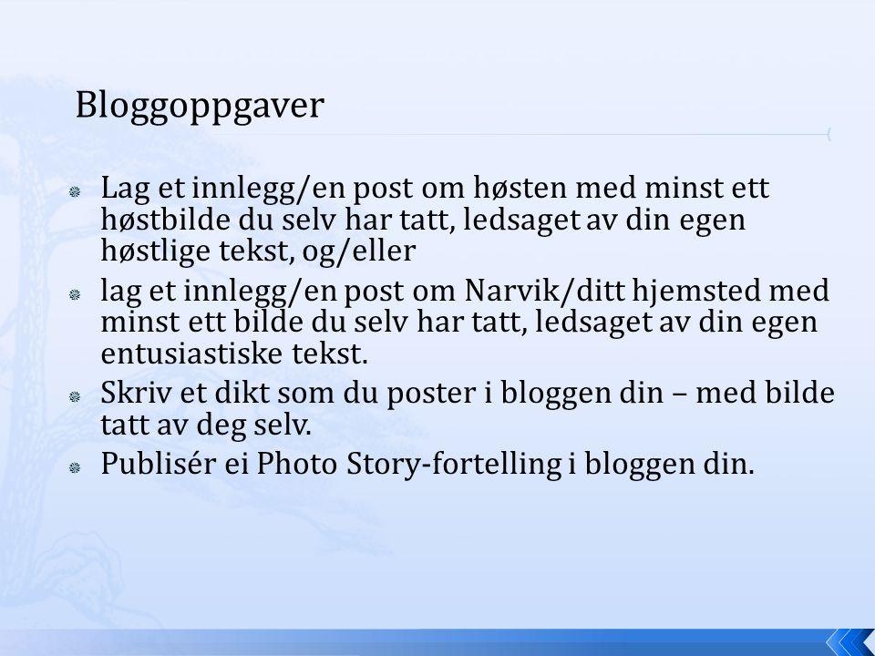 Bloggoppgaver  Lag et innlegg/en post om høsten med minst ett høstbilde du selv har tatt, ledsaget av din egen høstlige tekst, og/eller  lag et innlegg/en post om Narvik/ditt hjemsted med minst ett bilde du selv har tatt, ledsaget av din egen entusiastiske tekst.