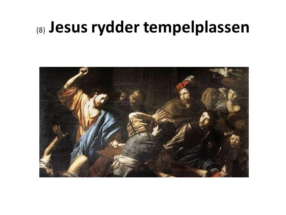 (8) Jesus rydder tempelplassen