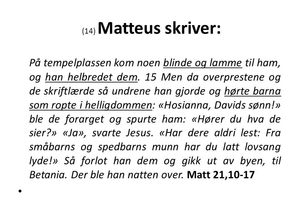 (14) Matteus skriver: På tempelplassen kom noen blinde og lamme til ham, og han helbredet dem.