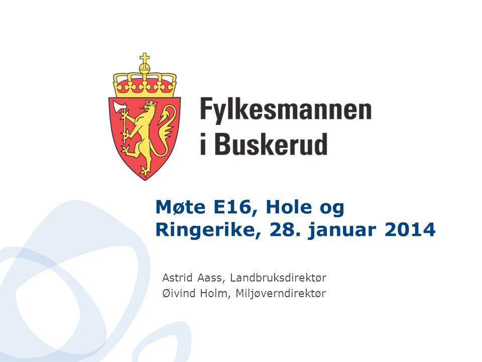Møte E16, Hole og Ringerike, 28. januar 2014 Astrid Aass, Landbruksdirektør Øivind Holm, Miljøverndirektør