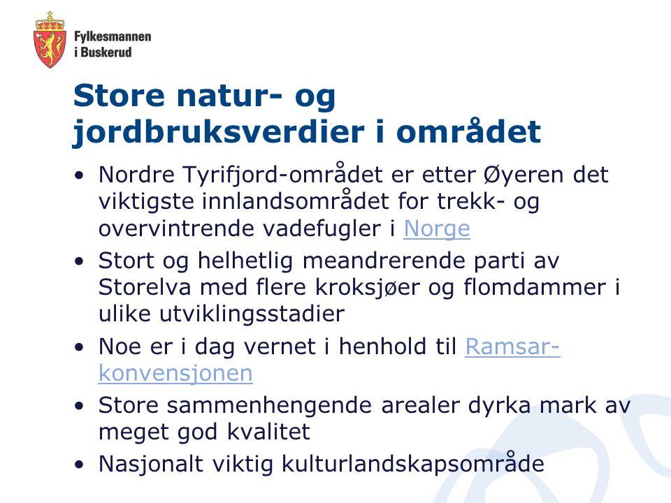 Store natur- og jordbruksverdier i området Nordre Tyrifjord-området er etter Øyeren det viktigste innlandsområdet for trekk- og overvintrende vadefugl