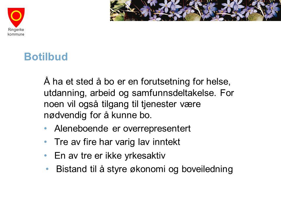 Ringerike kommune Botilbud Å ha et sted å bo er en forutsetning for helse, utdanning, arbeid og samfunnsdeltakelse. For noen vil også tilgang til tjen