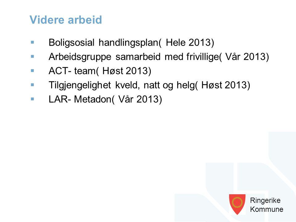 Ringerike Kommune  Boligsosial handlingsplan( Hele 2013)  Arbeidsgruppe samarbeid med frivillige( Vår 2013)  ACT- team( Høst 2013)  Tilgjengelighe