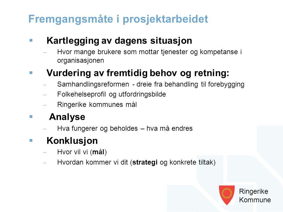 Ringerike Kommune  Kartlegging av dagens situasjon – Hvor mange brukere som mottar tjenester og kompetanse i organisasjonen  Vurdering av fremtidig