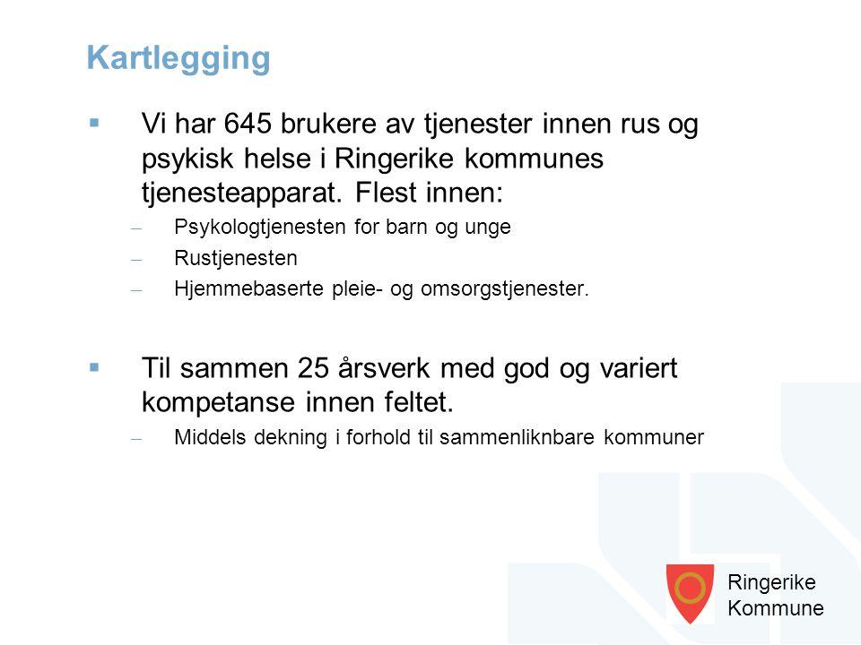 Ringerike Kommune  Vi har 645 brukere av tjenester innen rus og psykisk helse i Ringerike kommunes tjenesteapparat. Flest innen: – Psykologtjenesten