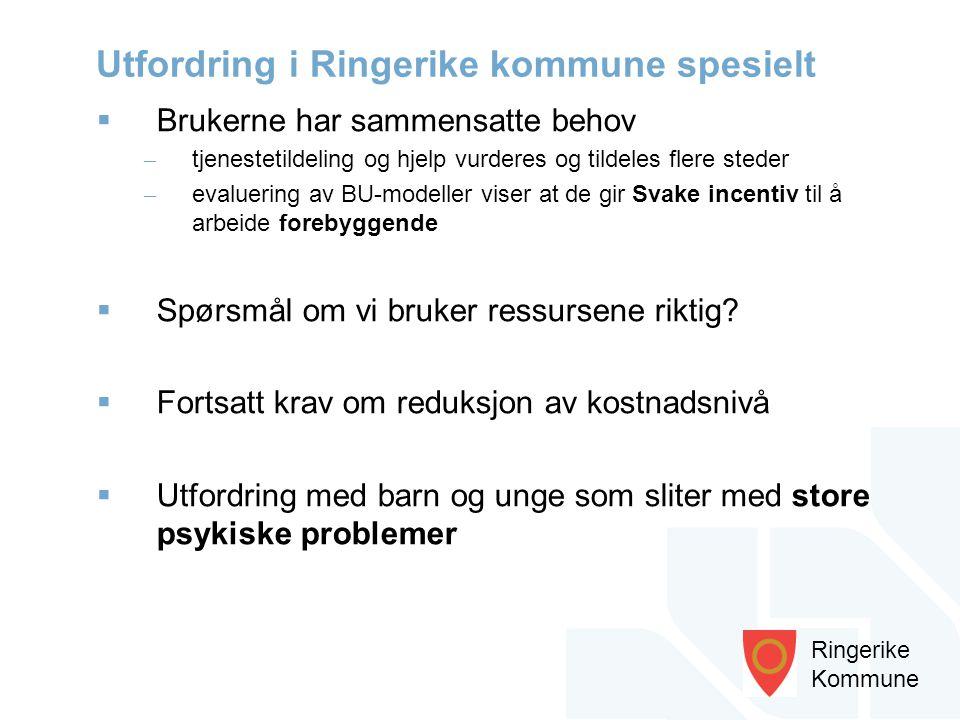 Ringerike Kommune  Brukerne har sammensatte behov – tjenestetildeling og hjelp vurderes og tildeles flere steder – evaluering av BU-modeller viser at