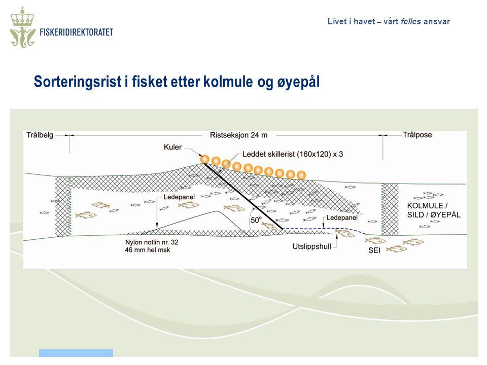 Livet i havet – vårt felles ansvar Finansiering og samarbeid Fiskeridirektoratet.