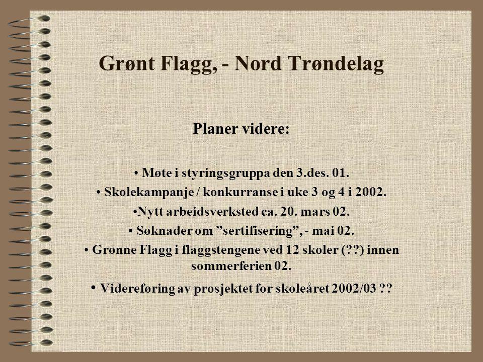Grønt Flagg, - Nord Trøndelag Planer videre: Møte i styringsgruppa den 3.des. 01. Skolekampanje / konkurranse i uke 3 og 4 i 2002. Nytt arbeidsverkste