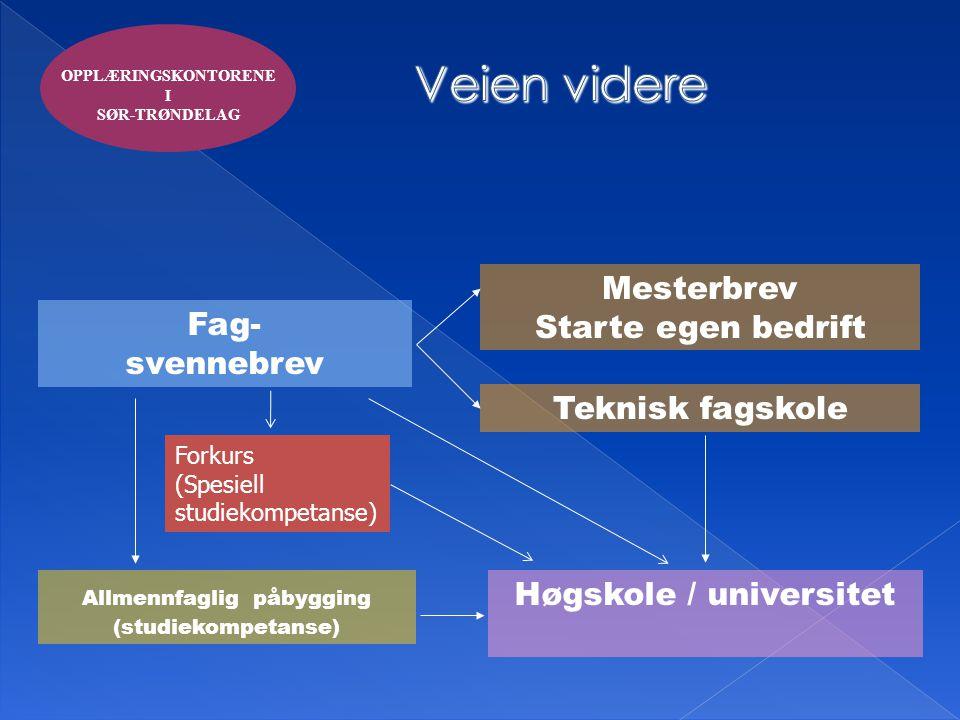 Fag- svennebrev Mesterbrev Starte egen bedrift Høgskole / universitet Allmennfaglig påbygging (studiekompetanse) Teknisk fagskole OPPLÆRINGSKONTORENE