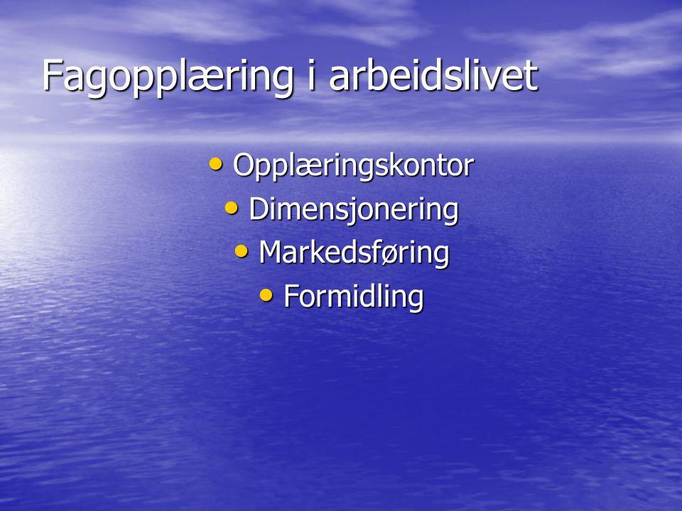 Fagopplæring i arbeidslivet Opplæringskontor Opplæringskontor Dimensjonering Dimensjonering Markedsføring Markedsføring Formidling Formidling