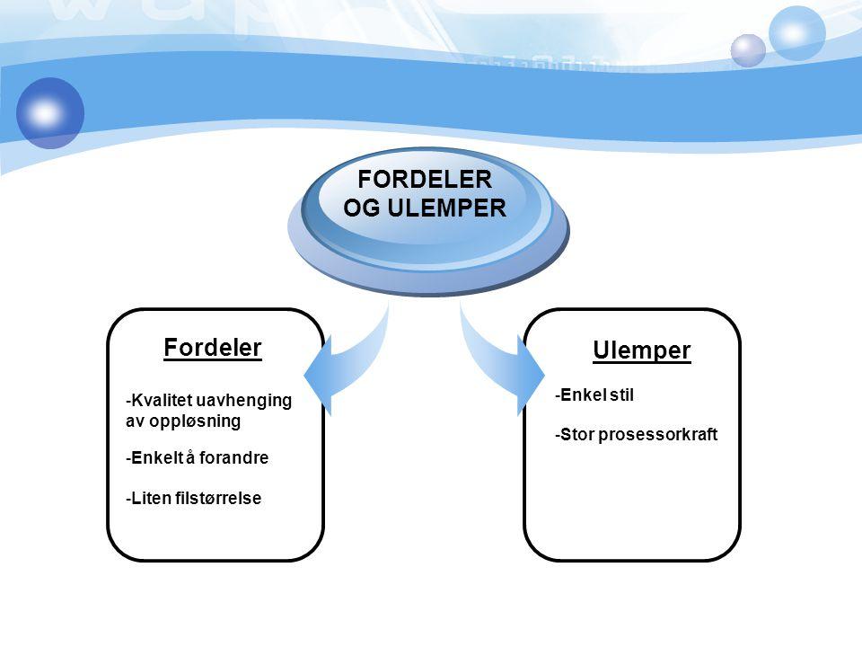 Fordeler -Kvalitet uavhenging av oppløsning -Enkelt å forandre -Liten filstørrelse FORDELER OG ULEMPER Ulemper -Enkel stil -Stor prosessorkraft