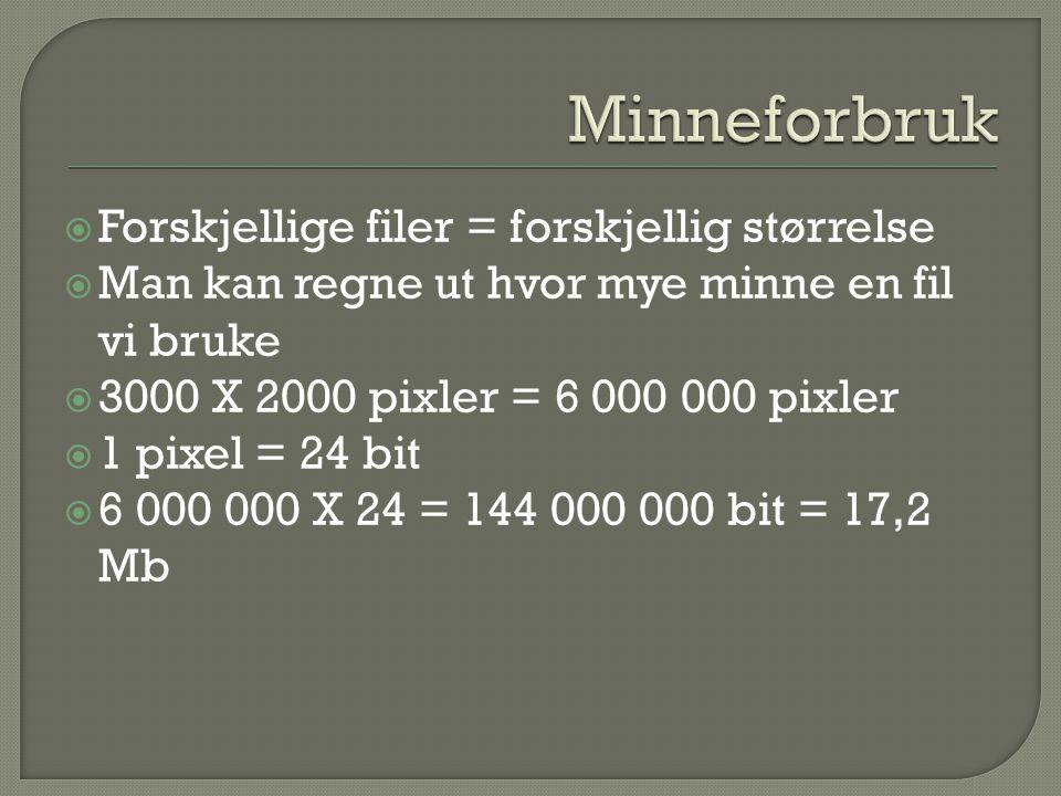  Forskjellige filer = forskjellig størrelse  Man kan regne ut hvor mye minne en fil vi bruke  3000 X 2000 pixler = 6 000 000 pixler  1 pixel = 24 bit  6 000 000 X 24 = 144 000 000 bit = 17,2 Mb