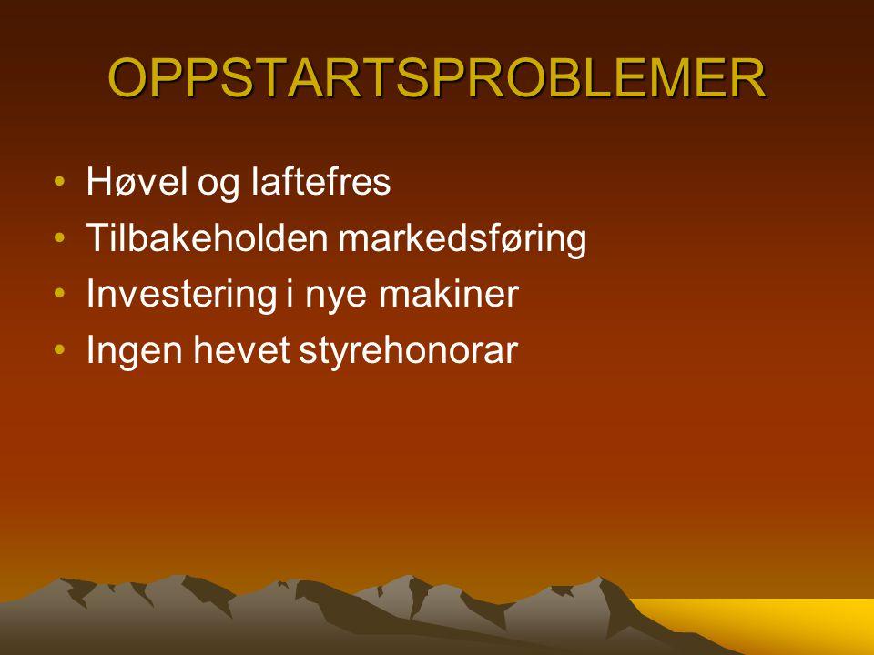 OPPSTARTSPROBLEMER Høvel og laftefres Tilbakeholden markedsføring Investering i nye makiner Ingen hevet styrehonorar
