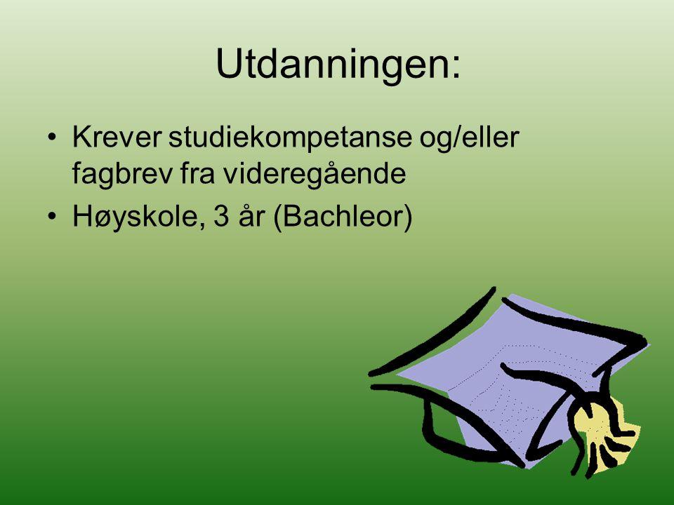 Utdanningen: Krever studiekompetanse og/eller fagbrev fra videregående Høyskole, 3 år (Bachleor)