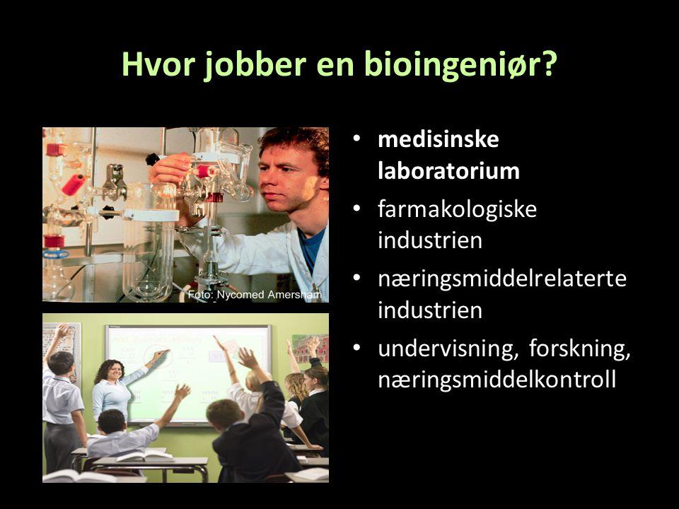 Hvor jobber en bioingeniør.