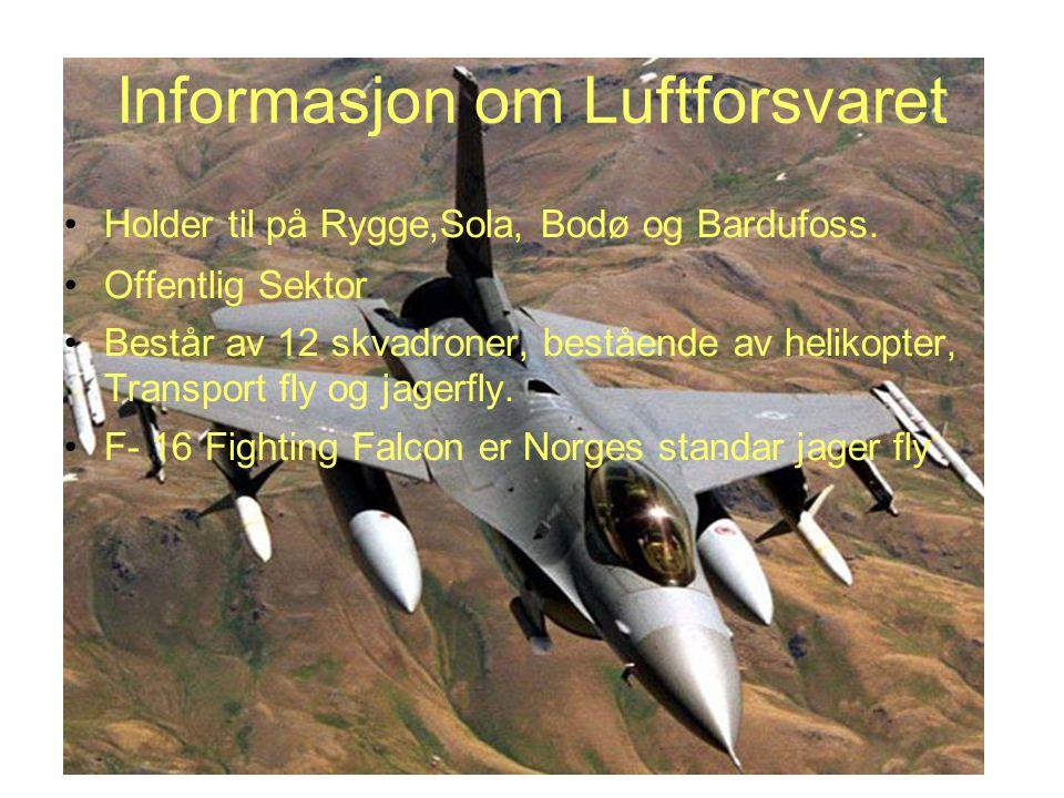Informasjon om Luftforsvaret Holder til på Rygge,Sola, Bodø og Bardufoss. Offentlig Sektor Består av 12 skvadroner, bestående av helikopter, Transport