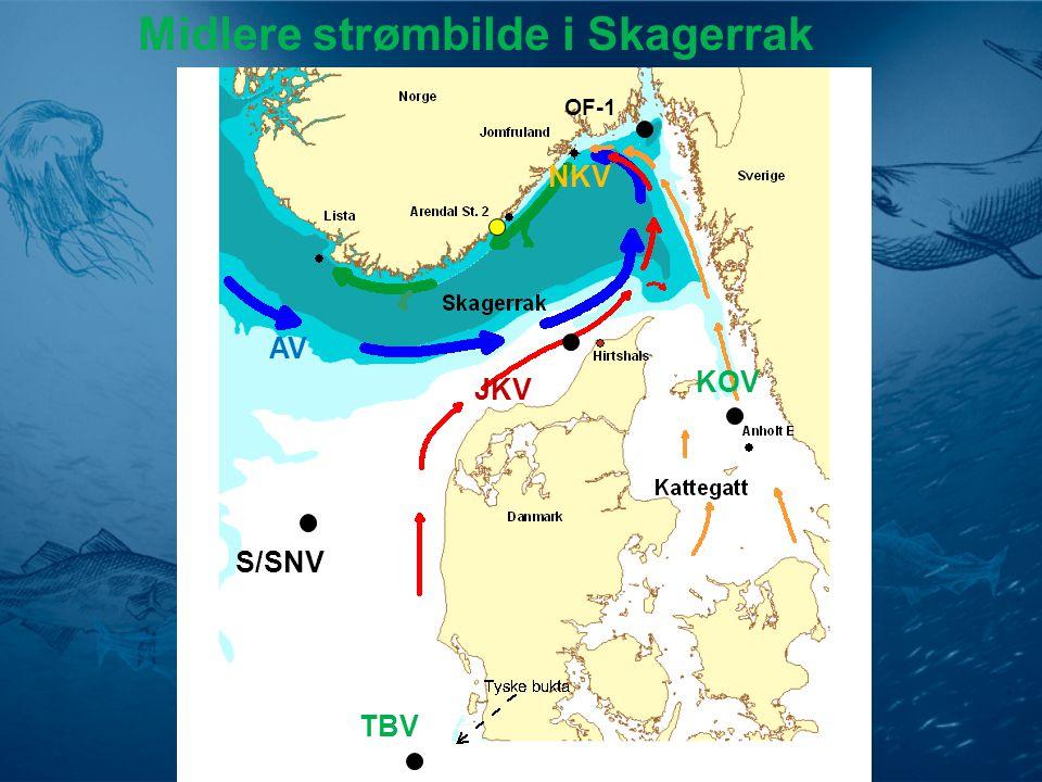 Endringer i nitratverdiene i Tyskebukta og Skagerrak kystvann etter 1965 NO 3 = - 30 %
