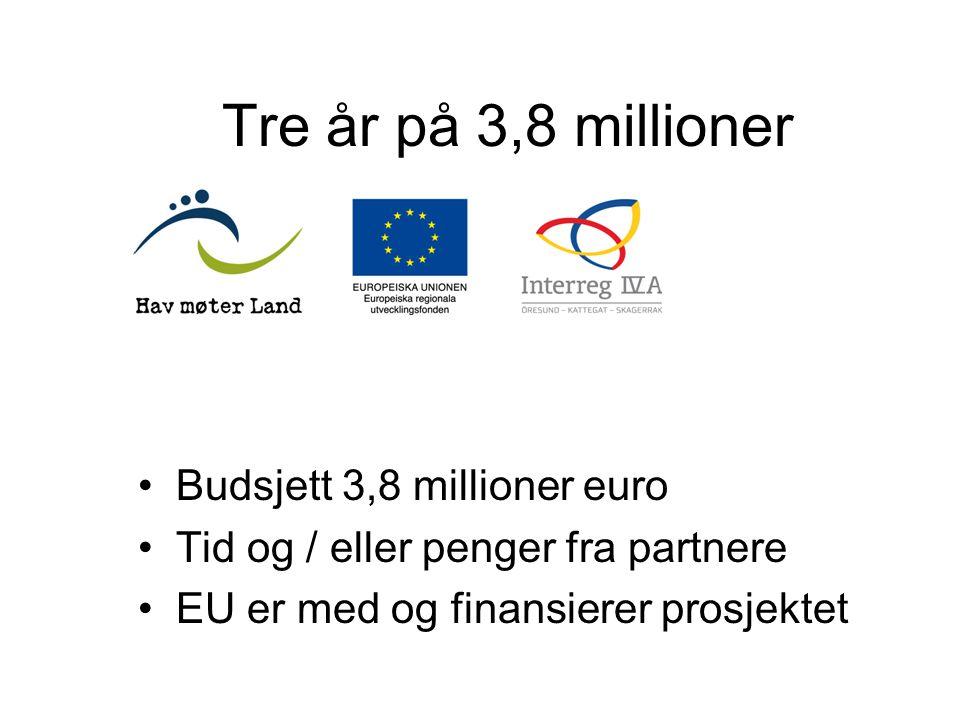 Tre år på 3,8 millioner Budsjett 3,8 millioner euro Tid og / eller penger fra partnere EU er med og finansierer prosjektet