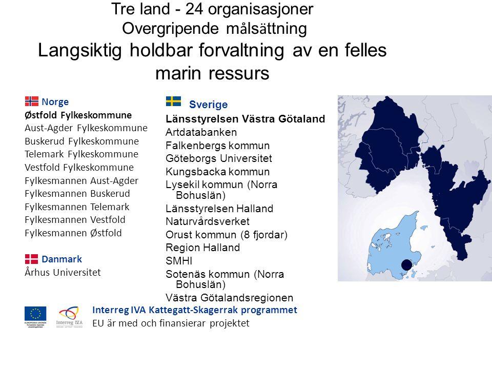 Sverige Länsstyrelsen Västra Götaland Artdatabanken Falkenbergs kommun Göteborgs Universitet Kungsbacka kommun Lysekil kommun (Norra Bohuslän) Länsstyrelsen Halland Naturvårdsverket Orust kommun (8 fjordar) Region Halland SMHI Sotenäs kommun (Norra Bohuslän) Västra Götalandsregionen Tre land - 24 organisasjoner Overgripende m å ls ä ttning Langsiktig holdbar forvaltning av en felles marin ressurs Interreg IVA Kattegatt-Skagerrak programmet EU är med och finansierar projektet Norge Østfold Fylkeskommune Aust-Agder Fylkeskommune Buskerud Fylkeskommune Telemark Fylkeskommune Vestfold Fylkeskommune Fylkesmannen Aust-Agder Fylkesmannen Buskerud Fylkesmannen Telemark Fylkesmannen Vestfold Fylkesmannen Østfold Danmark Århus Universitet