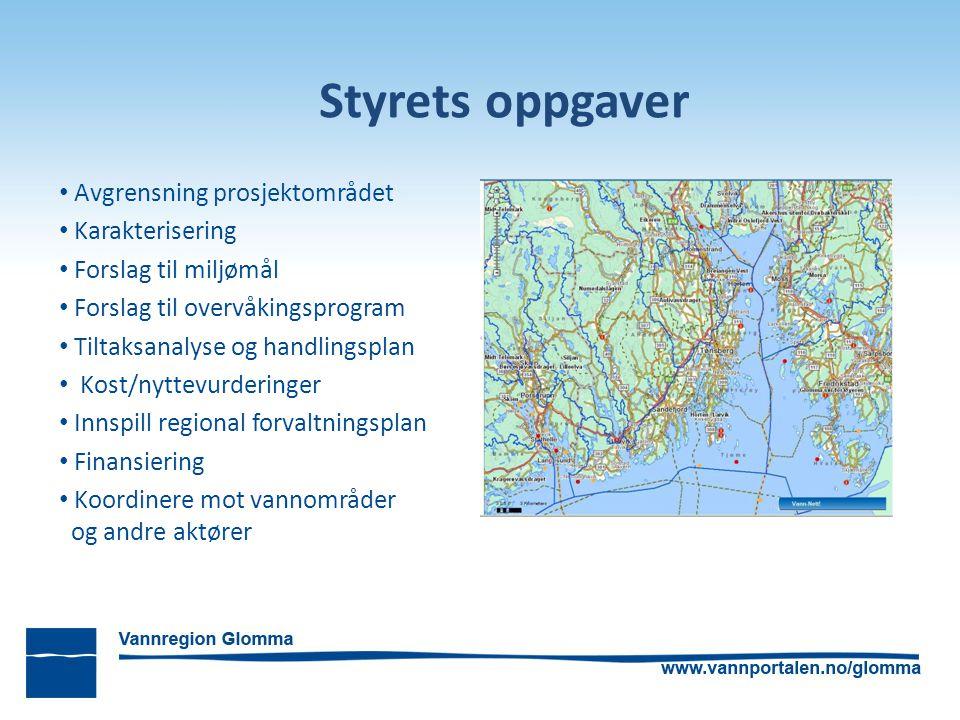Styrets oppgaver Avgrensning prosjektområdet Karakterisering Forslag til miljømål Forslag til overvåkingsprogram Tiltaksanalyse og handlingsplan Kost/