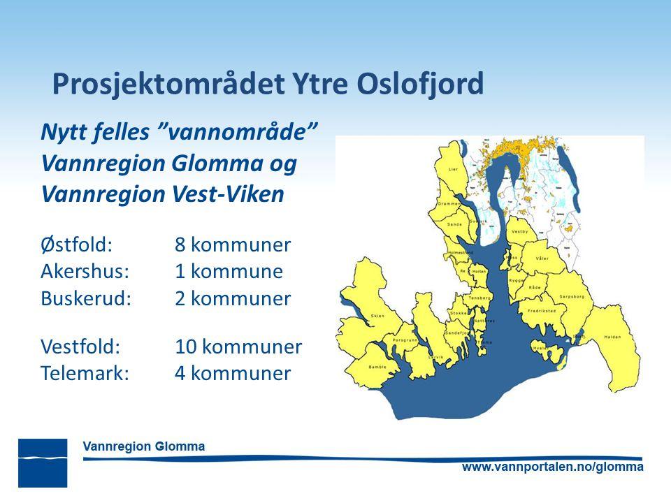 Organisering Politisk styringsgruppe Buskerud FK Østfold FK Vestfold FK Telemark FK Fagrådet Ytre Oslofjord 4 ordførere Fylkesmannen i Østfold Fylkesmannen i Vestfold
