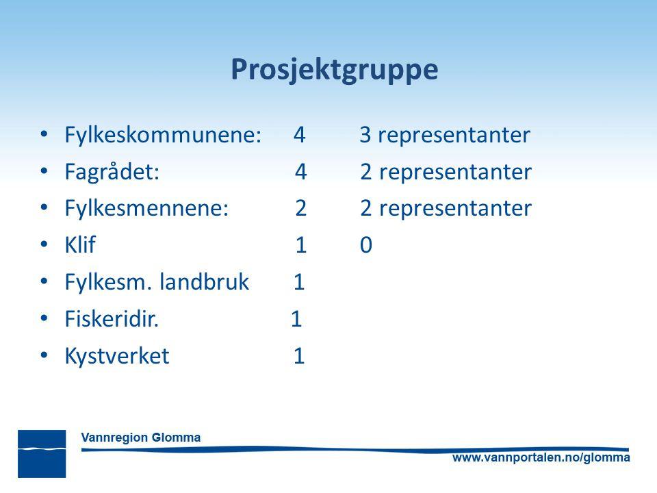 Prosjektgruppe Fylkeskommunene: 4 3 representanter Fagrådet: 4 2 representanter Fylkesmennene: 2 2 representanter Klif 1 0 Fylkesm. landbruk 1 Fiskeri