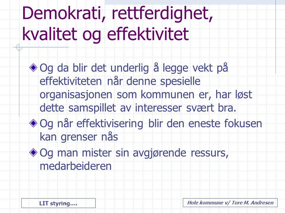 LIT styring…. Hole kommune v/ Tore M. Andresen Demokrati, rettferdighet, kvalitet og effektivitet Og da blir det underlig å legge vekt på effektivitet