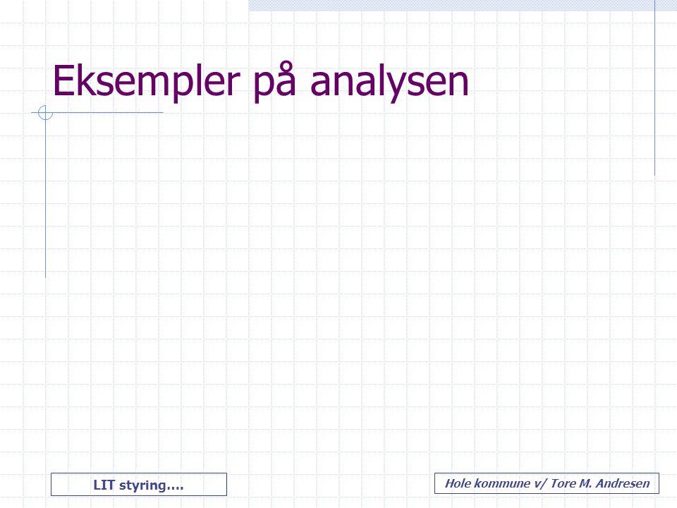 LIT styring…. Hole kommune v/ Tore M. Andresen Eksempler på analysen