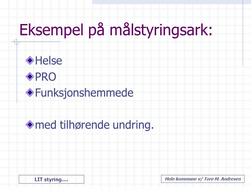 LIT styring…. Hole kommune v/ Tore M. Andresen Eksempel på målstyringsark: Helse PRO Funksjonshemmede med tilhørende undring.