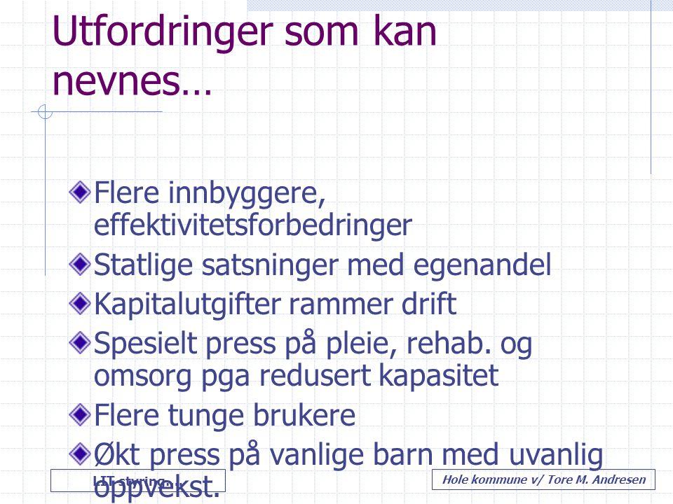 LIT styring…. Hole kommune v/ Tore M. Andresen Utfordringer som kan nevnes… Flere innbyggere, effektivitetsforbedringer Statlige satsninger med egenan