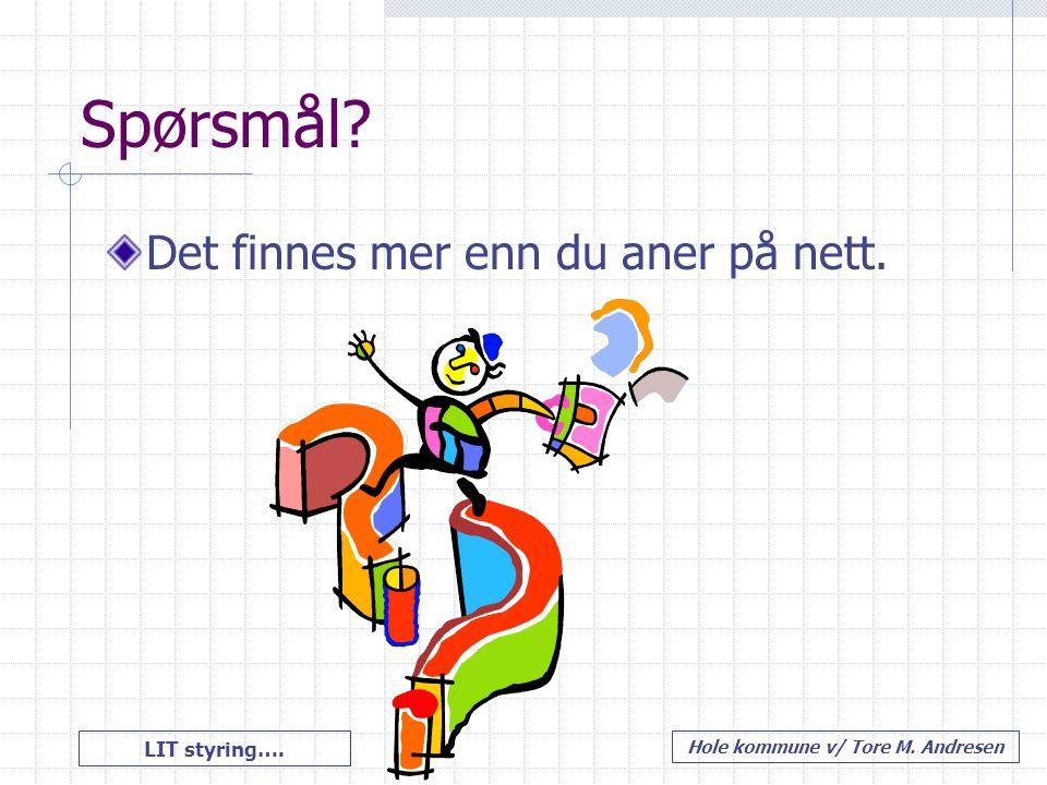 LIT styring…. Hole kommune v/ Tore M. Andresen Spørsmål? Det finnes mer enn du aner på nett.