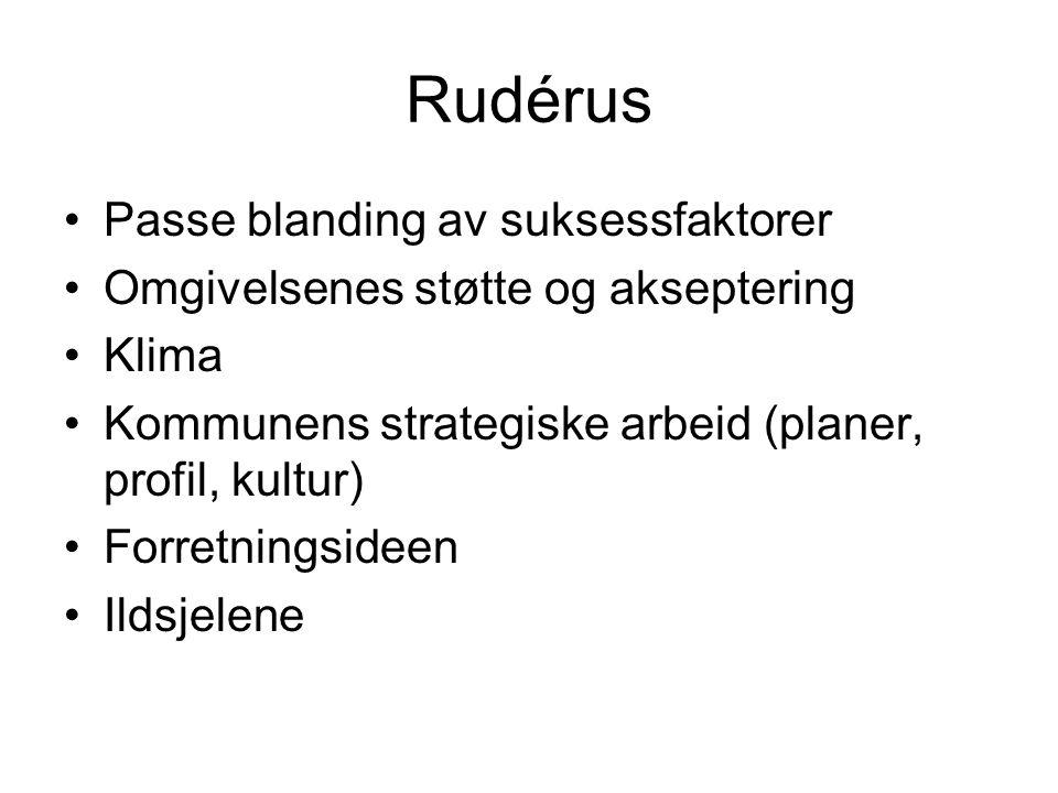 Rudérus Passe blanding av suksessfaktorer Omgivelsenes støtte og akseptering Klima Kommunens strategiske arbeid (planer, profil, kultur) Forretningsideen Ildsjelene